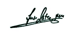 firma_luis